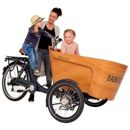 La Station du vélo 59 - cargo carve babboe